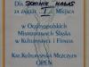 dyplom-dominik-halas-2015-1.jpg