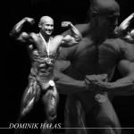 Dominik Hałas (autor: Sylwester Szymczuk)